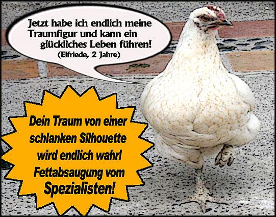 Goldener Windbeutel für Hühnersuppe der Firma Knorr